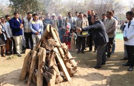 lohri-celebration-jcd-dental-college-2